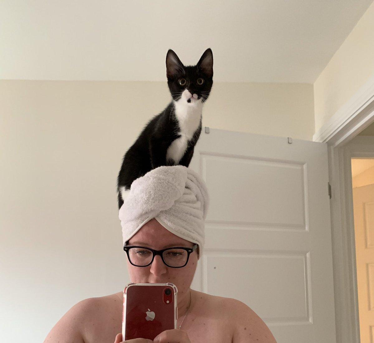 My morning routine isn't the same anymore now that a #tuxedocat #kitten decided to sit on my head. #newkitten #catsoftwitter thank goodness Mabel doesn't try this. Her fat backside would cause my skull to cave.<br>http://pic.twitter.com/t14b3nznvD