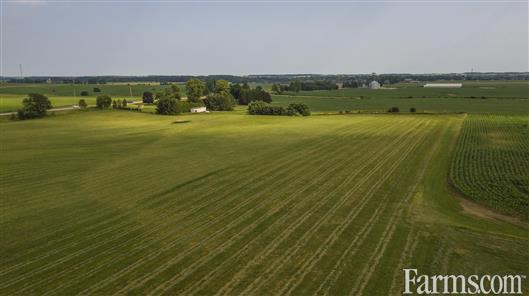 79 acre cash #crop farm is available in Belmont, #Ontario! 67 acres are workable (clay loam soil) with 12 acres of forest. http://www.farms.com/farm-real-estate/farms-for-sale/ontario/79-acre-cash-crop-middlesex-county-for-sale-belmont-ontario-1358.aspx … #OntAg #FarmRealEstate #ForSale #Agriculture #RealEstate #Farm365 #OntarioRealEstate
