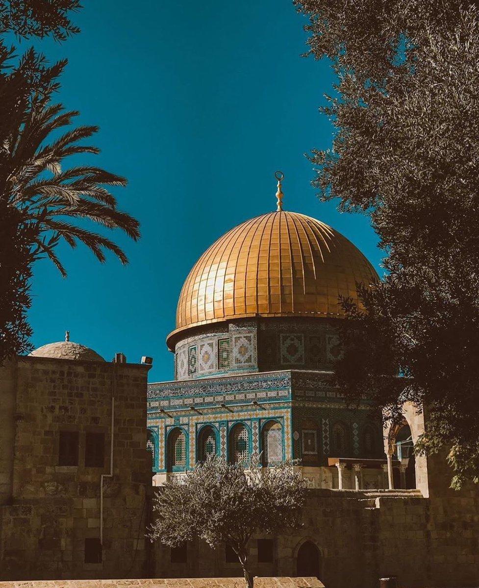 Good night from Palestine 🇵🇸