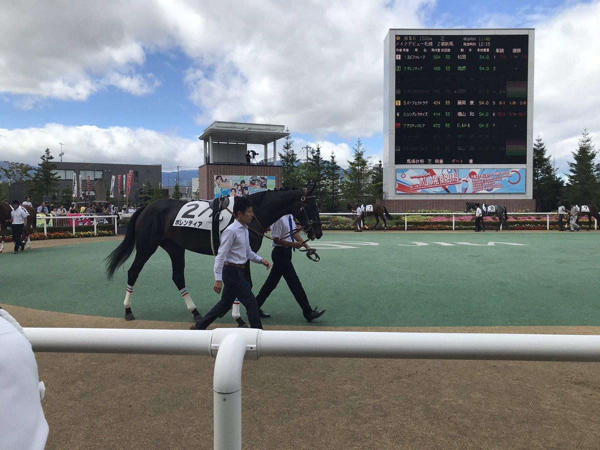 札幌5レース新馬戦。  パドックでよく見えたのは、ボレンティア、アスティパレア。  1番人気、2番人気やん。。。  #札幌競馬場  #メイクデビュー
