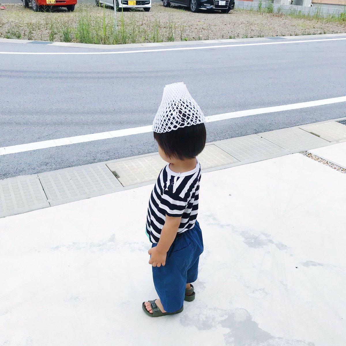吉本ユータヌキさんの投稿画像