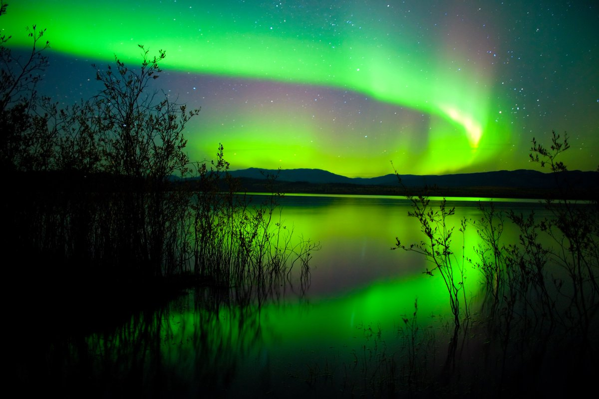 """""""Life is the most spectacular show on earth."""" ― Water for Elephants by Canadian Author Sara Gruen. #FridayFeeling  Lake Laberge, Yukon <br>http://pic.twitter.com/cvig3I9exX"""
