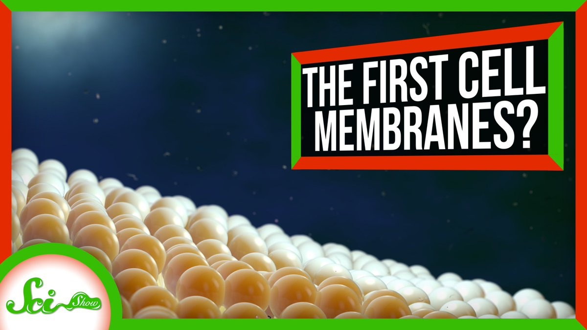 Researchers think theyve found a way the first proto-cells could have gotten their membranes. youtu.be/MDTk73FJ5hw