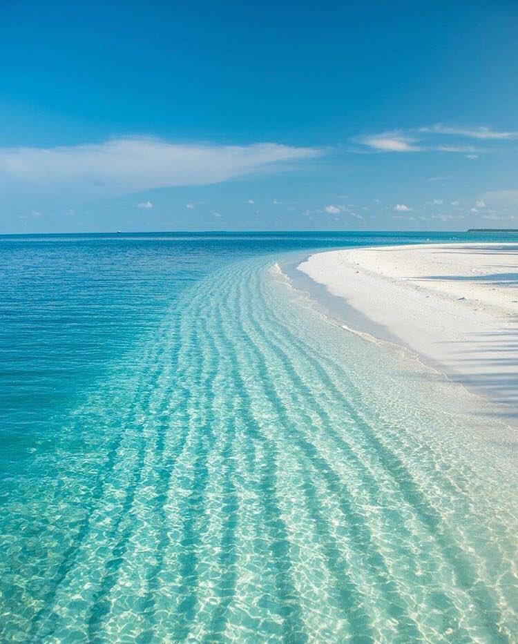 The Maldives 😍💙