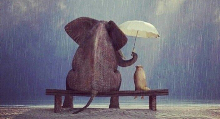 I believe in the magic of kindness.