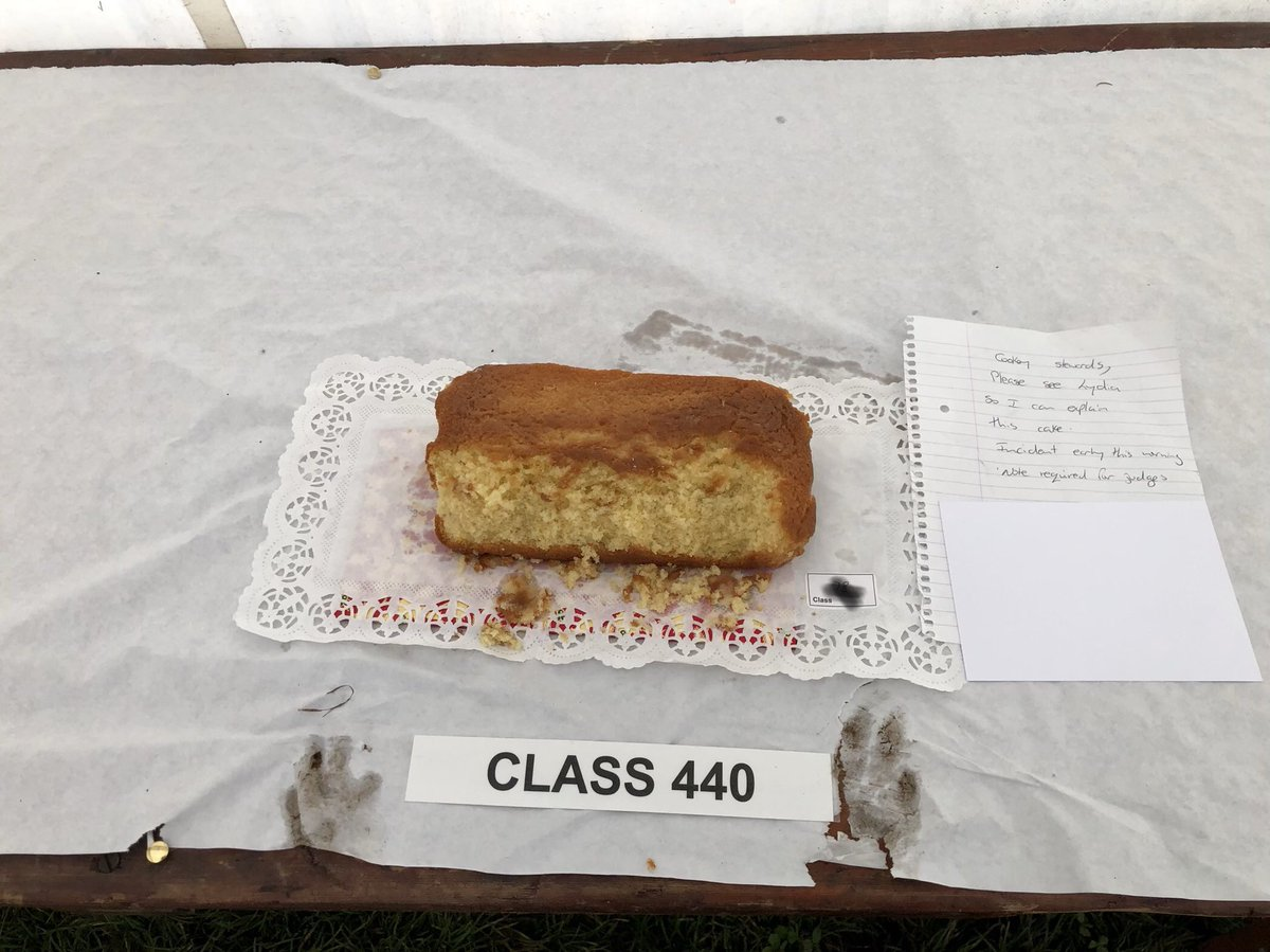 Warkworth Show off to a good start, a dog has eaten one of the exhibits #villagelife