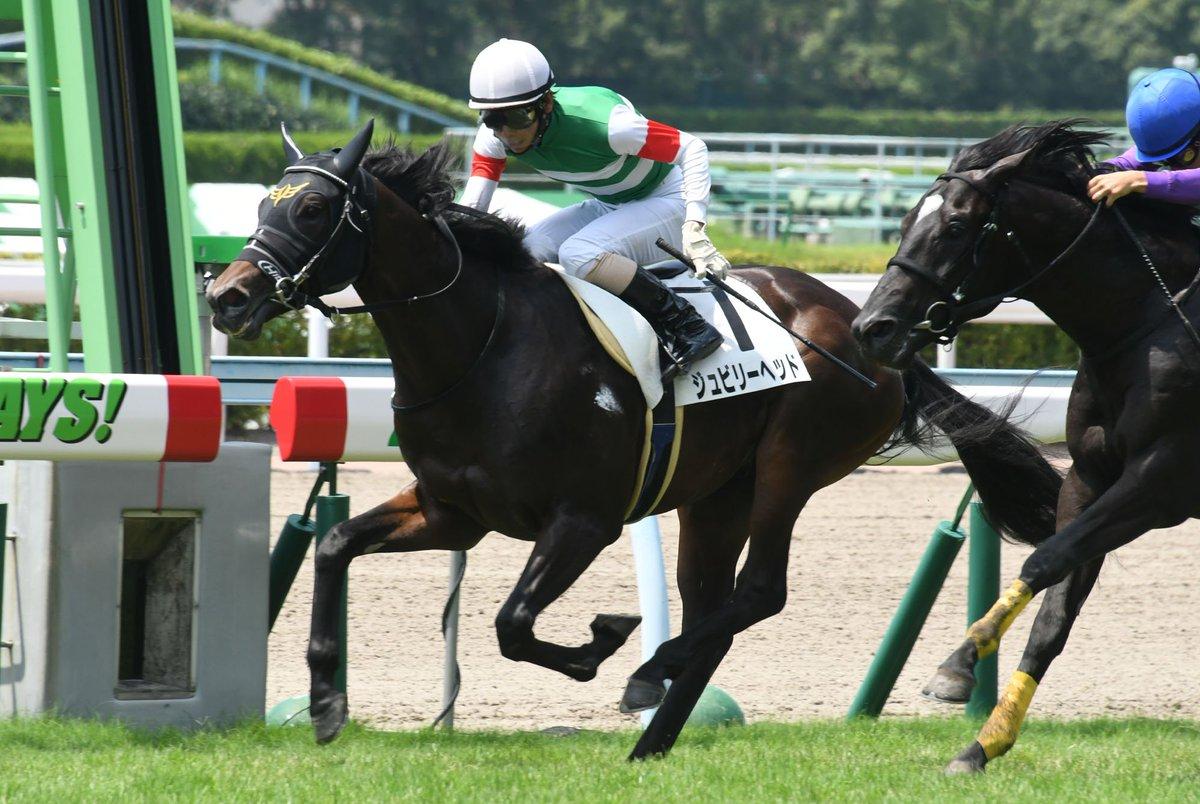 父ロードカナロア、父父キングカメハメハ、母父ディープインパクト…日本競馬の未来を担う配合馬の好発進  #ジュビリーヘッド https://t.co/ZSCk5eftGt