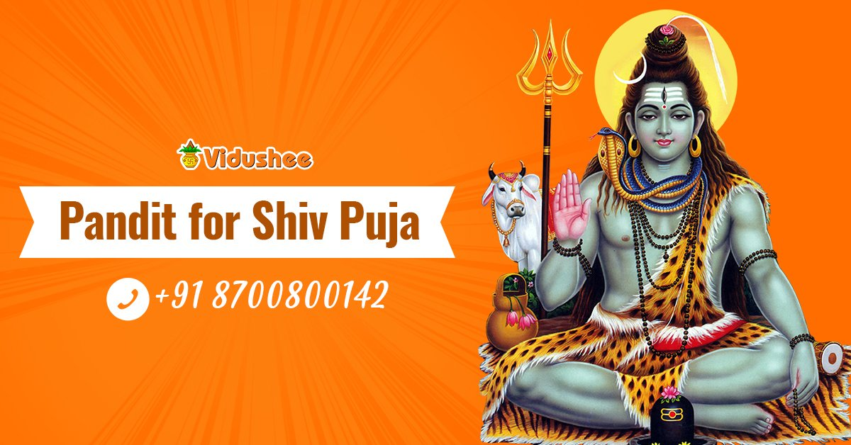 Pandit for Shiv Puja - Call at 8700800142 #Lord #Shiva, one