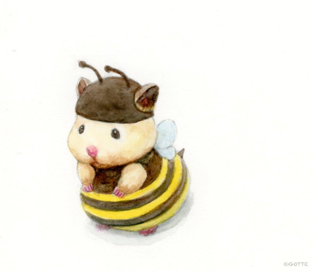 キンクマバチ