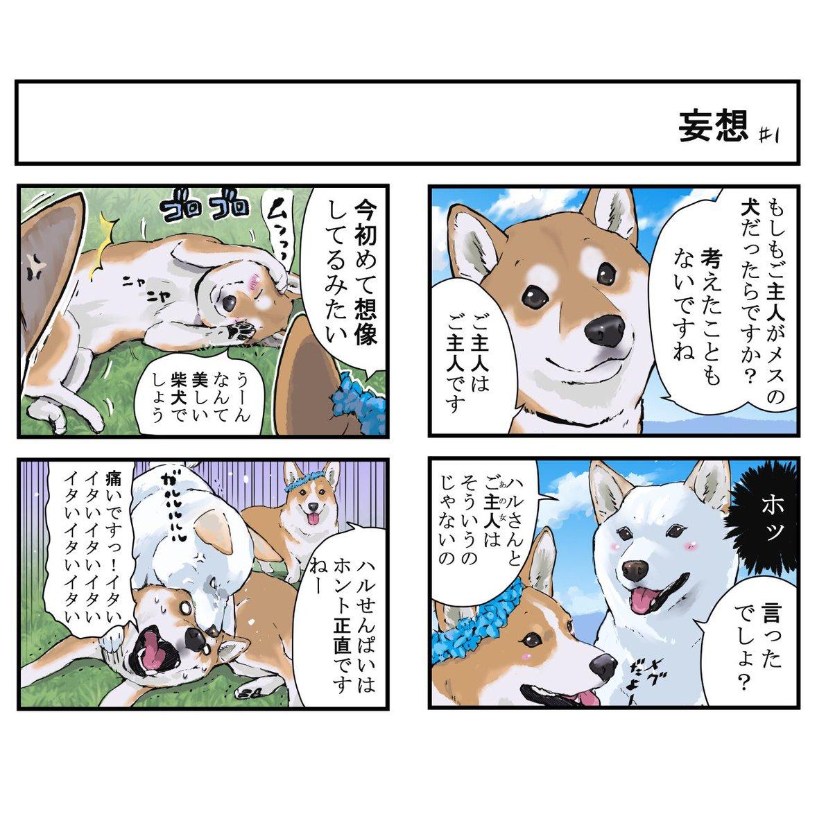 世界の終わりに柴犬と犬と飼い主の妄想