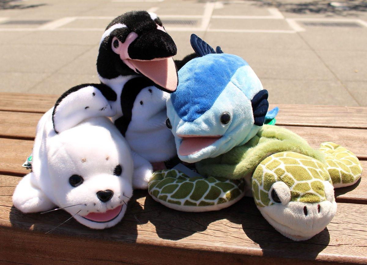 RT @KasaiSuizokuen: お盆の連続ツイートいかがだったでしょうか?      夏休みの思い出作りに葛西臨海水族園に遊びに来てね(^^♪  ハンドパペット 各2,160円 #かさりん #tslp_g https://t.co/FU4lZr8MFU