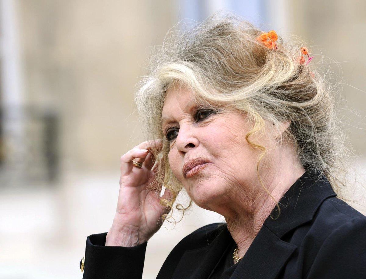 Brigitte Bardot demande à Edouard Philippe de supprimer le ministère de l'#Ecologie    https:// francais.rt.com/france/65033-b rigitte-bardot-demande-edouard-philippe-suprimer-ministere-ecologie  … <br>http://pic.twitter.com/0DaAaPBmw1