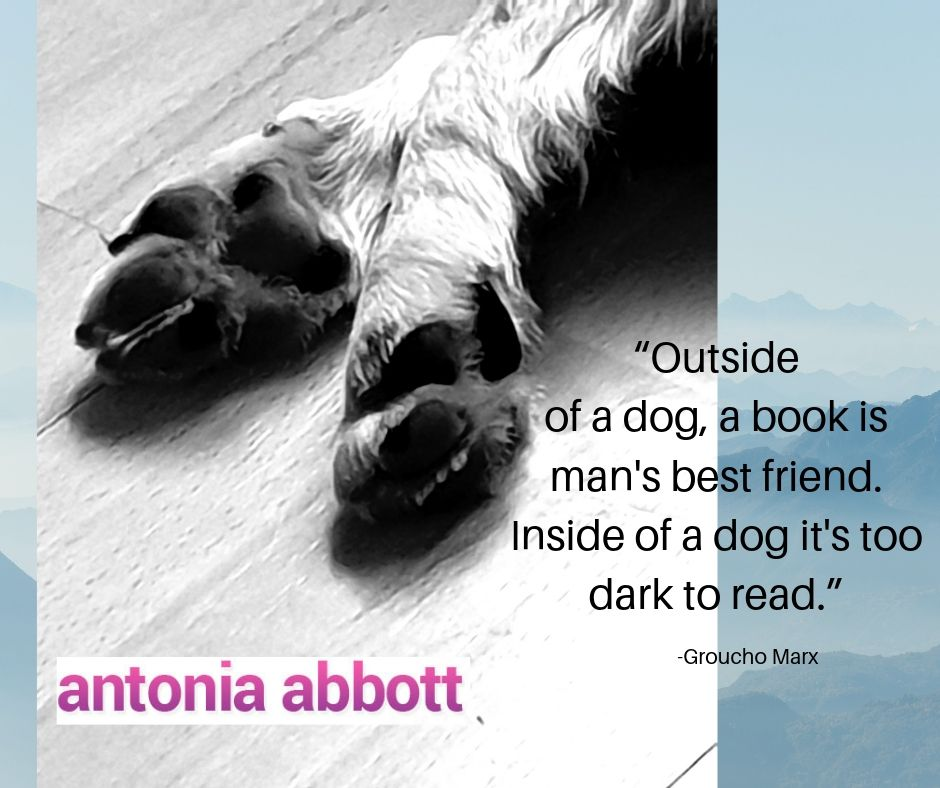 Are books your best friend?  #BookLover# bookquotes <br>http://pic.twitter.com/zQuvvTzApN