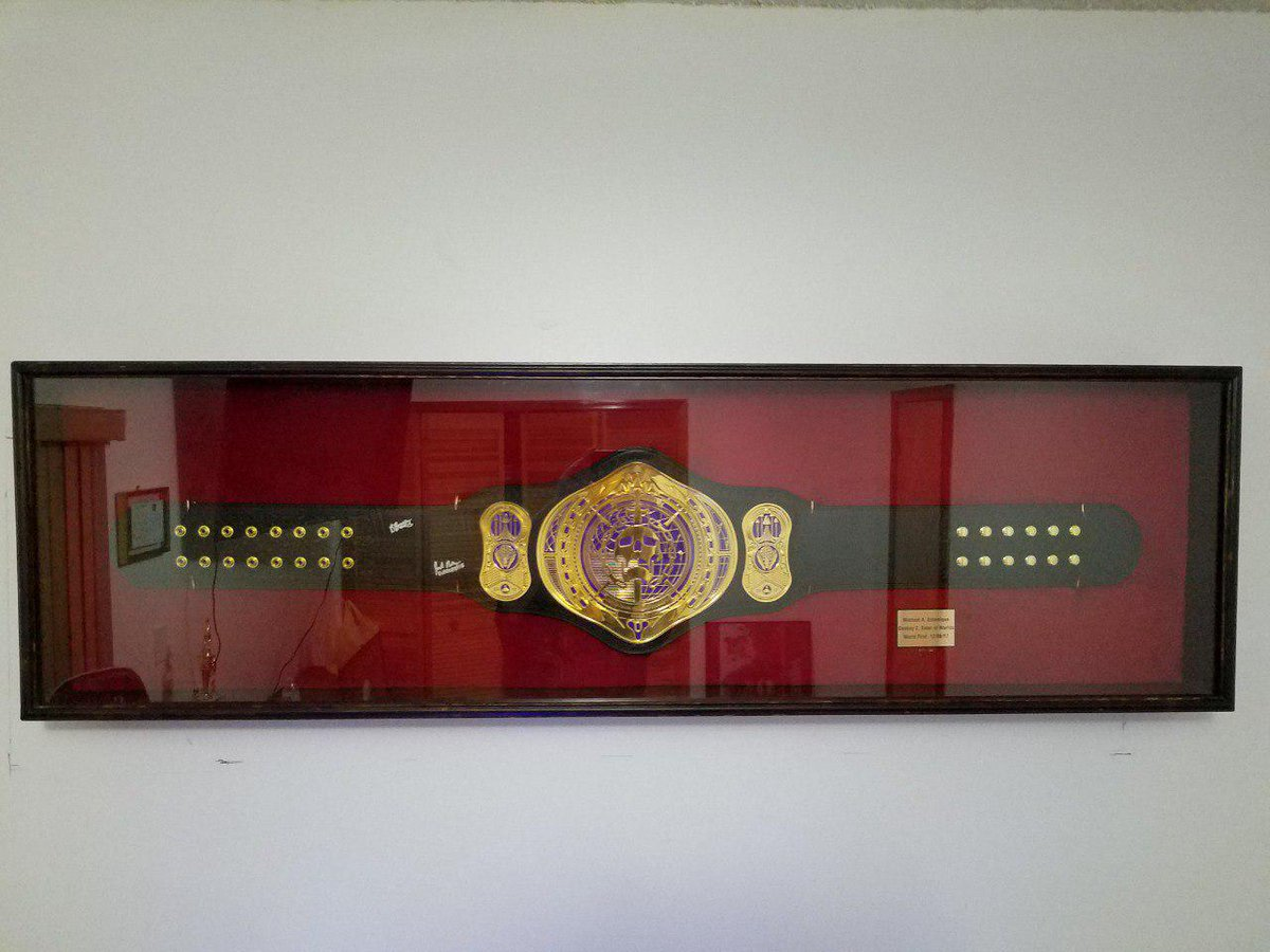 My World First Belt Display Case