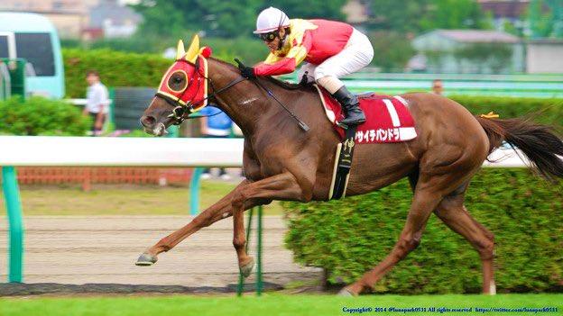 #フサイチパンドラ は亡くなってたんですね #アーモンドアイ の活躍をお空から見守っていますね 今日の #土曜名馬座 も最高だった 涙が…