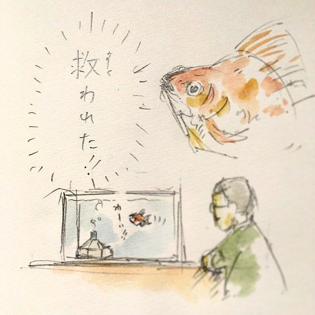 金魚すくい。
