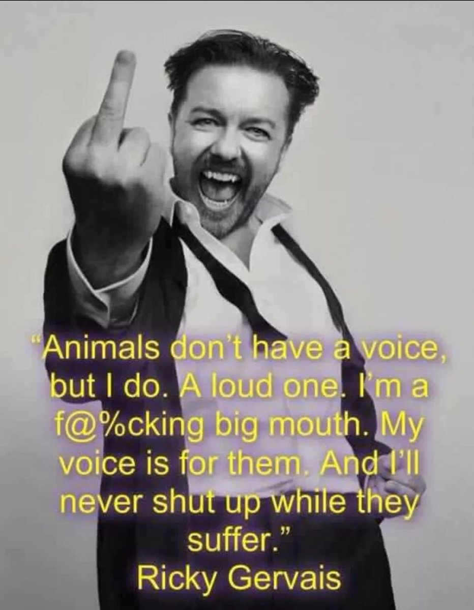And we love you for it @rickygervais  plus The Office- my first DVD, Derek- the best human ever, and After Life- watched it 3 times, desperate for season 2!  #BanTrophyHunting  #BanBullfighting  #EndAnimalSlavery  #AdoptDontBuy<br>http://pic.twitter.com/ZbUMTvejj8