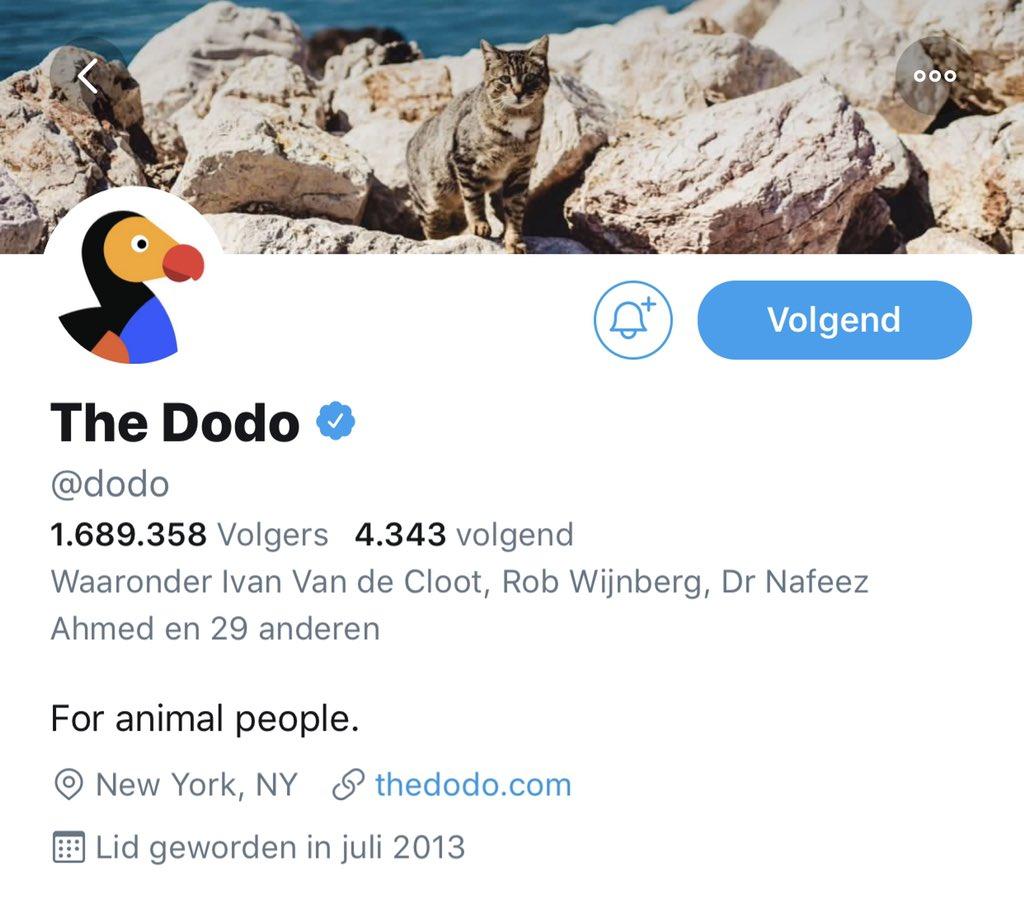 Ideale antidote tegen de periodieke negativiteit/banale discussies op Twitter  ➡️ @dodo   #PositiveVibes 😁 https://t.co/auMFT8Oi3r