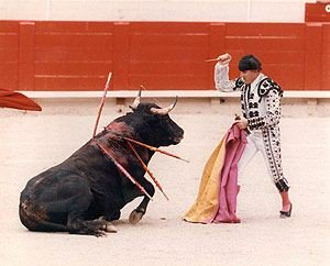 Only sadistic psychopaths find pleasure torturing a helpless animal....  including a bull!!  Culture is just an excuse to profit from animal suffering!   #banbullfighting #AnimalCruelty  #Stopbullfighting<br>http://pic.twitter.com/pRxJRc0reJ
