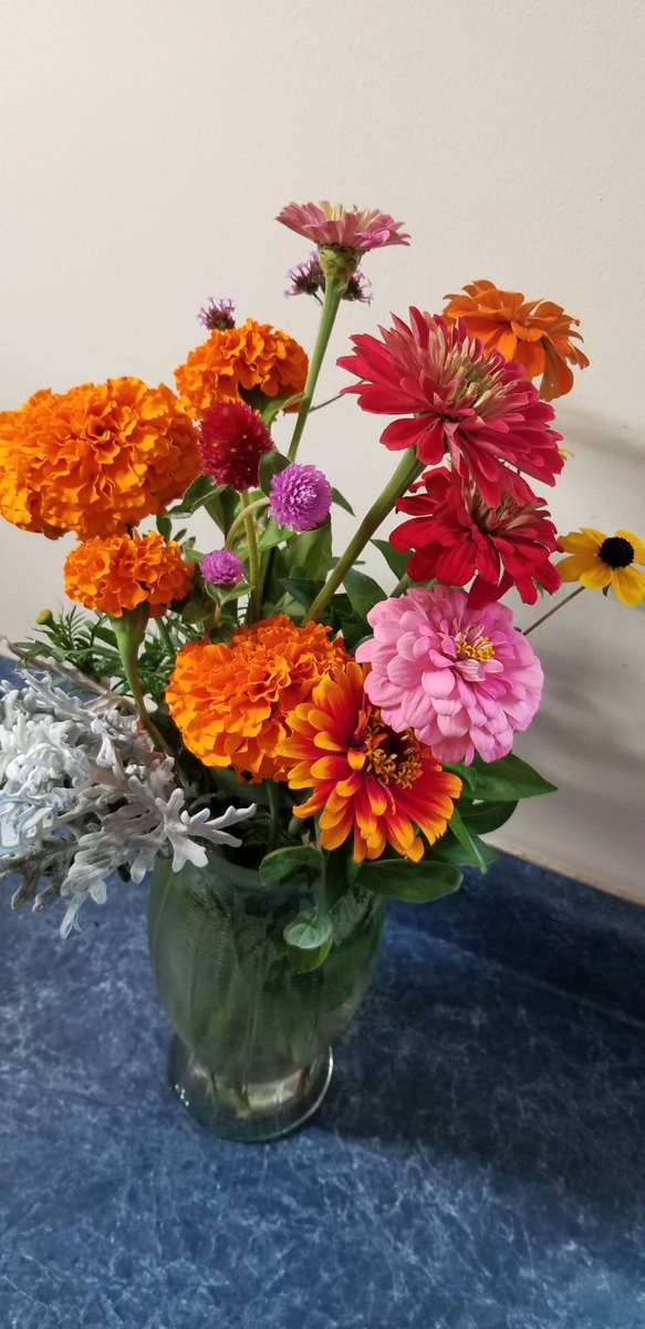 Fresh cut flowers from an Amish Greenhouse. .10¢ a piece!! An affordable bouquet for $1.40!!