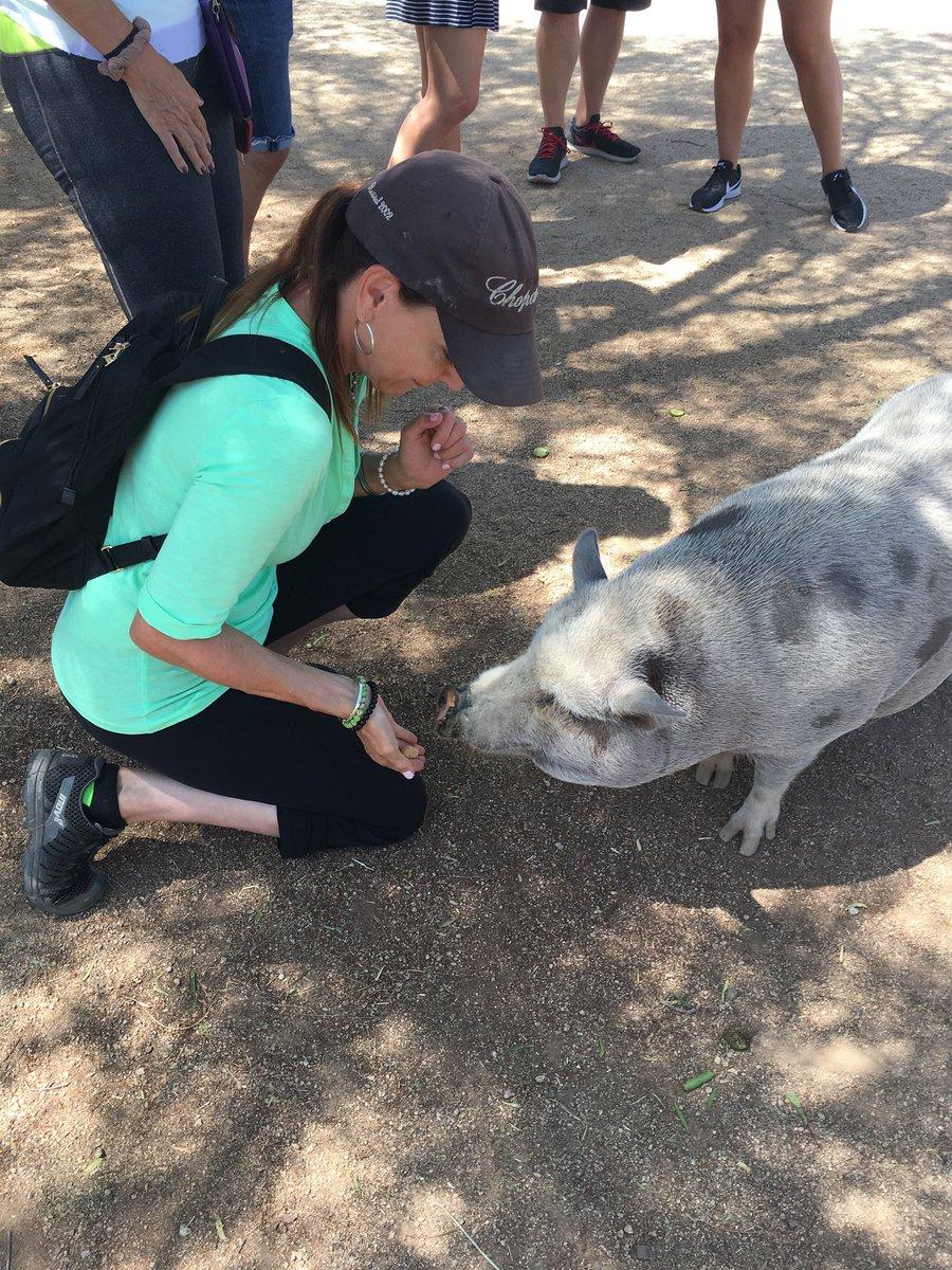 "Let's stop using the word ""pig"" to refer to sexist jerks like Steve King. #pigsrule #thatlldopig @AnimalTracksInc"
