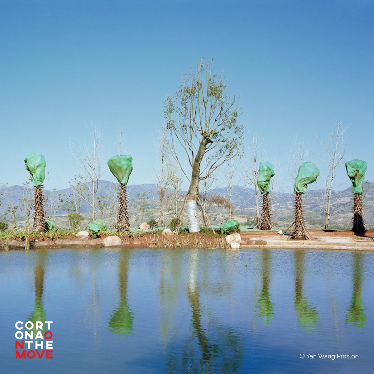 "#COTM2019 - This year, landscape and nature are among the main focuses of Cortona On The Move. @YanWangPreston with ""Forest""; @YaakovIsrael with ""The Legitimacy of Landscape""; @claudiusschulze in a project commissioned by @aboca. We're waiting for you: https://t.co/DwDEzgmwhF https://t.co/YZ0WpHsveo"