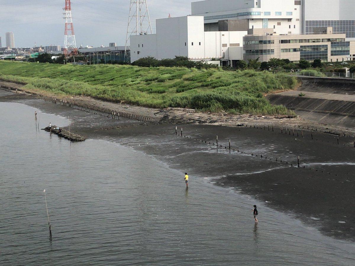【コラム】「東京湾うんこまみれ問題」は ...