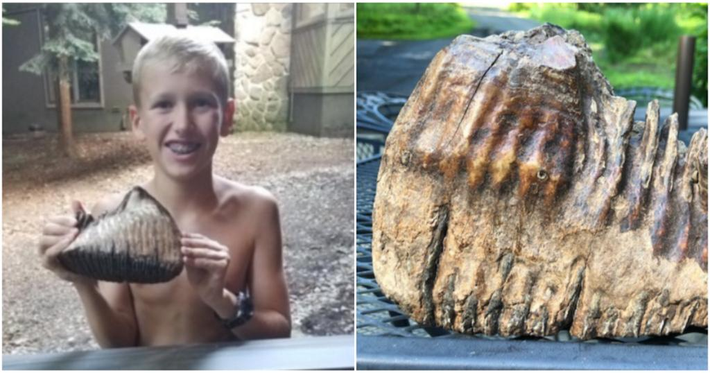 12-year-old discovers apparent woolly mammoth toothwhile on vacation in Ohio cbsn.ws/2OXL4Fn