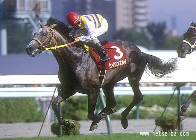 スカイの付く馬で思い付いたのが セイウンスカイ、ついでディープスカイ セイウンスカイの現役時なら黒く見えないこともないかな。