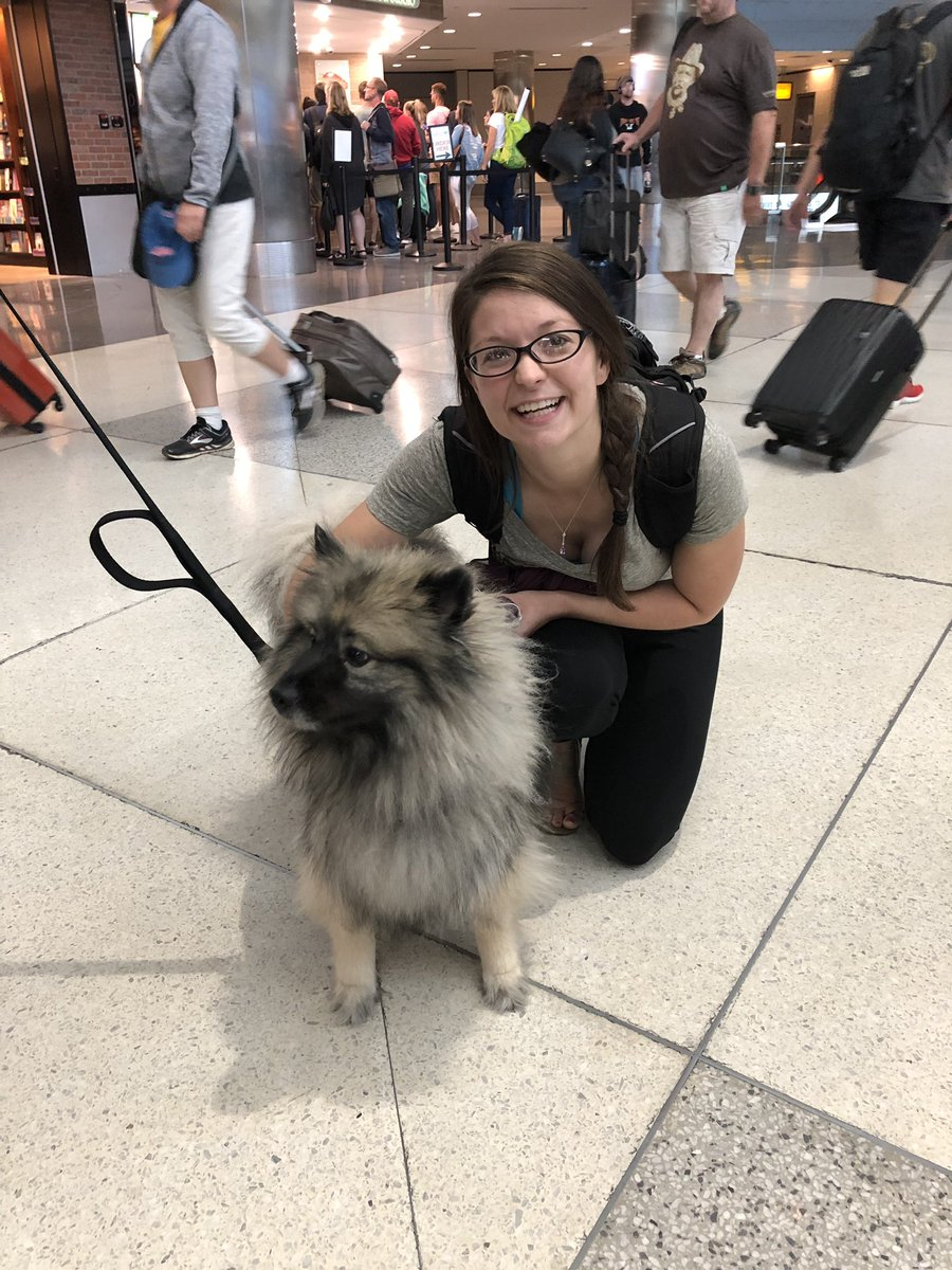 I'M SO HAPPY  I fly out of @DENAirport almost monthly, but this is the first time I've ever seen the therapy dogs! After a nearly two hour delay getting home, it was great to be welcomed back by CiCi and Sarah <br>http://pic.twitter.com/9XYUZixkhc