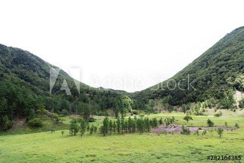 刈込湖周辺の風景 https://stock.adobe.com/jp/stock-photo/id/282164385… @adobestock #stockphoto #stockphotos #photo #photography #nature #日光 #ピクニック #ハイキング #登山 #自然 #平原 #観光地 #観光スポット