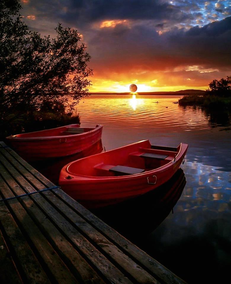 Good night ✨🌹🌙🌹✨ May your night be beautiful.