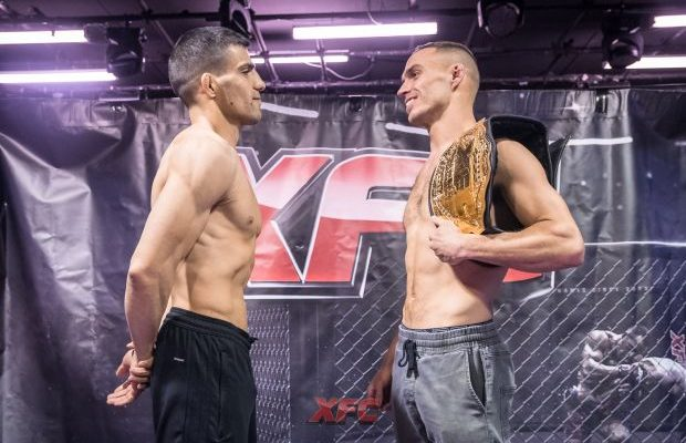XFC has a new featherweight champion with Mohammad Alavi stopping Jackson Small in the first round on Saturday night.   Full results and recap: http://www.fightnewsaustralia.com/xfc-42-recap-mohammad-alavi-stops-jackson-small-to-capture-featherweight-title/…
