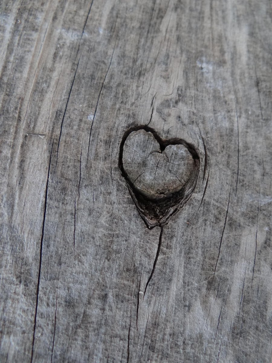 Love, in fact, is the agent of universal synthesis. Pierre Teilhard De Chardin #quotes #love