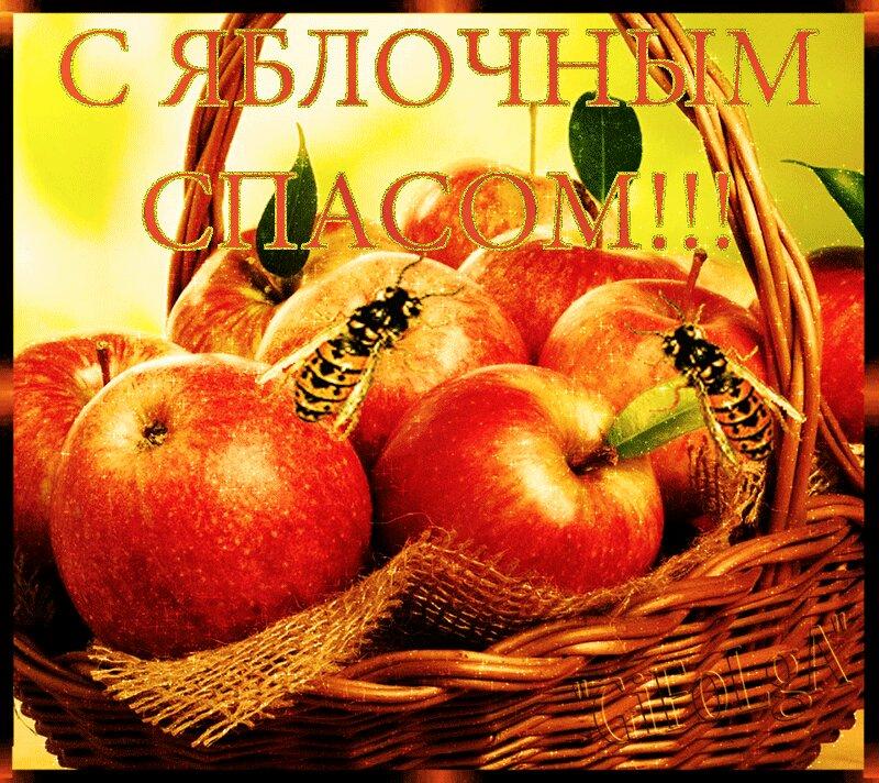 Яблочный спас гифки, пожелания дню