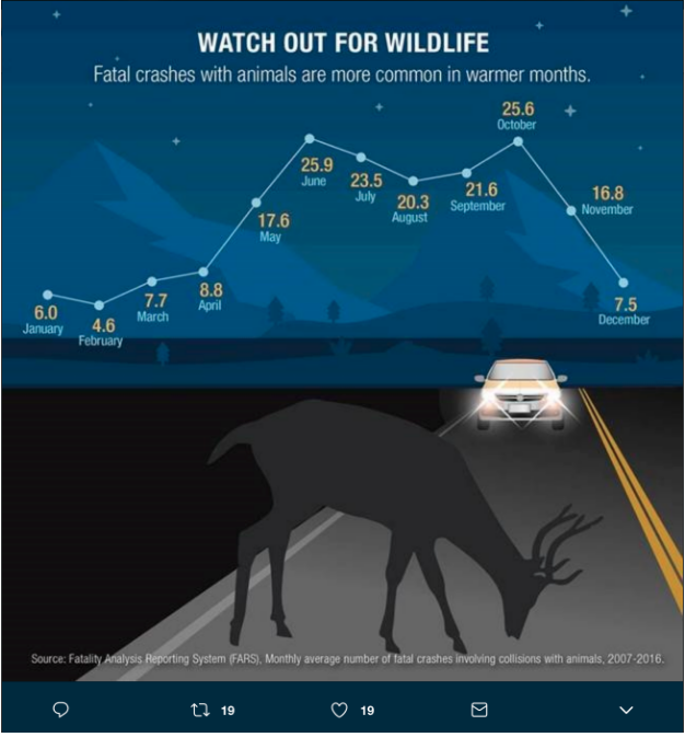 This summer, watch out for wildlife! Fatal crashes with animals are more common in warmer months. #NationalSafetyMonth <br>http://pic.twitter.com/PLooaImX8G