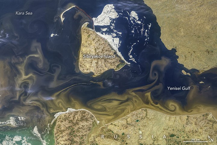 Five major #river systems move tremendous amounts of freshwater from North America and Eurasia to the Arctic Ocean. Of these, the #Yenisei in the Russian #Arctic drains the largest land area. earthobservatory.nasa.gov/images/145468/… earthobservatory.nasa.gov/images/78829/r… #NASA #Landsat #MODIS