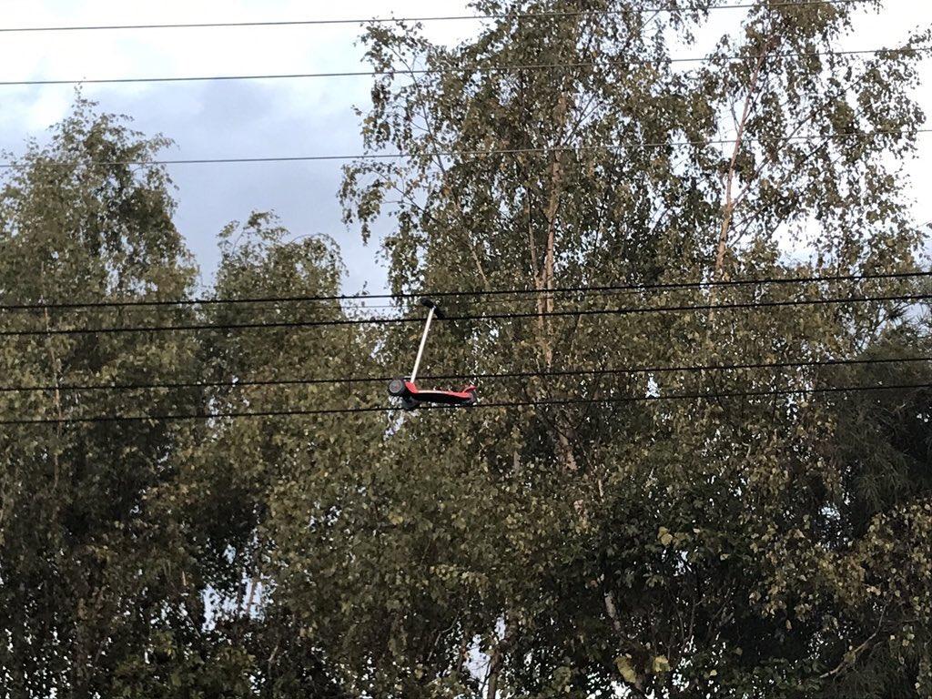 電線に引っかかったスクーター