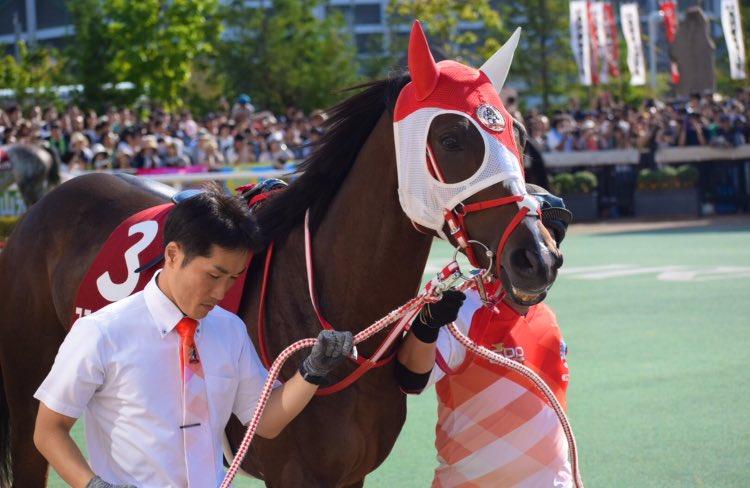 8/18 第55回 札幌記念 3番 ステイフーリッシュ(中谷 雄太騎手)