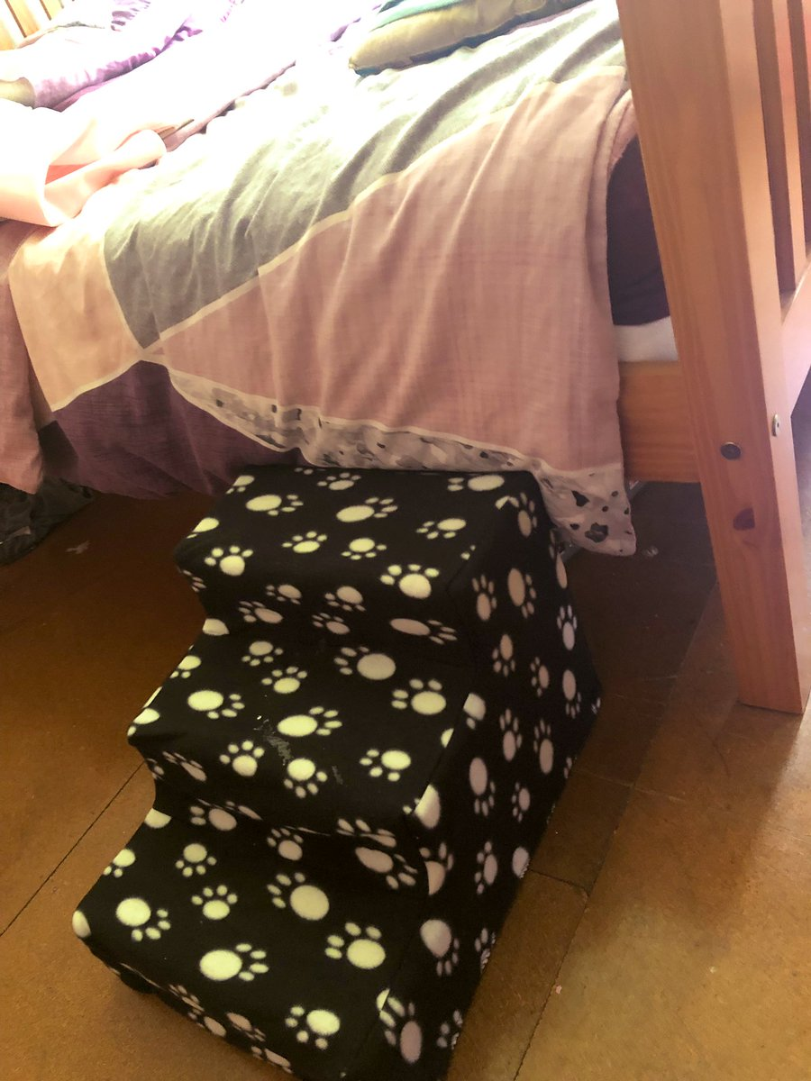 De best bit is dat me Nanny an Grrrdad got me sum stairs!!!! Cuz me always wakin mummy up at nite to get me in de bed  PALS! Me haff BED STAIRS!!!!!  No wunder daddy laffed  <br>http://pic.twitter.com/r3SOJKZOzZ