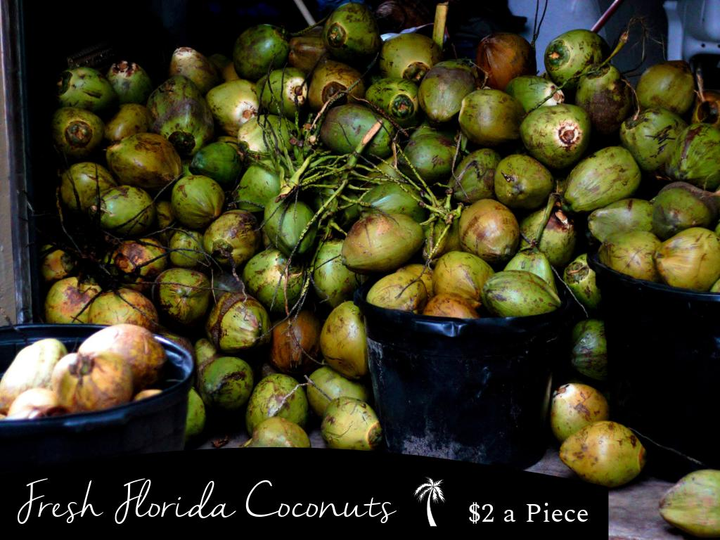 Cuzzos of St. Pete / Tampa Area -  We are now offering FRESH Miami Coconuts to Our Local TLC Cuzzos!    $2 per Coconut   $20 a Gallon  DM Me If Interested! 13Love <br>http://pic.twitter.com/XI3x4cQjHE
