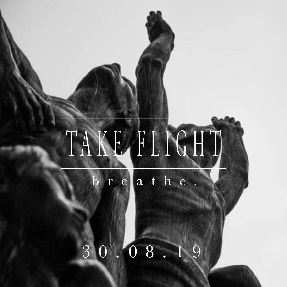 Image result for take flight breathe band