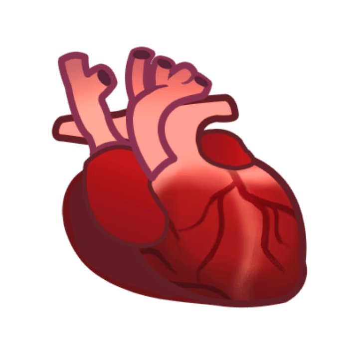 Pick up truck. Hook. Ladder. Screwdriver. Bucket. Many of next years emoji candidates look like something your contractor might txt u if u were remodeling part of ur house I guess but there is one Im really looking forward to:ANATOMICAL HEART. Its gonna make a great new emoji
