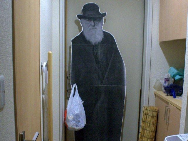ダーウィンが来た!という状況の写真です。