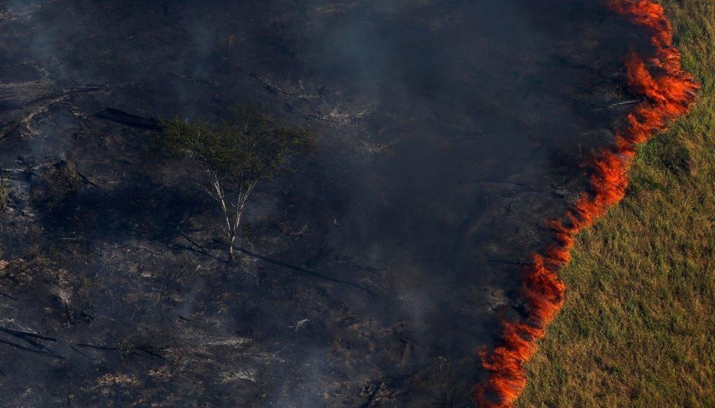 Lo que está pasando en el Amazonas me parte el corazón no puedo ver como todo eso se quema, el pulmón más grande el planeta está ardiendo, muchos animales mueren al igual que la vegetación. Esto es horrible ya van 16 días de que esta así, nos vamos a la mierda #PrayforAmazonia