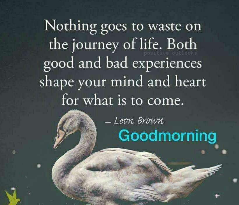 @spendharkar @RoverDov123 @karbabb @lagaviota521 @VClinebarton @JuanitaCSAthome @nathanjm000 @olevia_judy @RAndrewAuthor @AmandaRay02 @loveGoldenHeart @Dianne__LadyD @PrachiMalik @pratoshnivedita @Nikhil63870659 @sentii2013 @hapawriter @silicasun @arunbhar @Wrix2 Thank you Brother 😊🙏 Have a great day to all dear friends 👭👬👫 here😊🌹🌸🌼☕👍 Stay blessed always 🙏