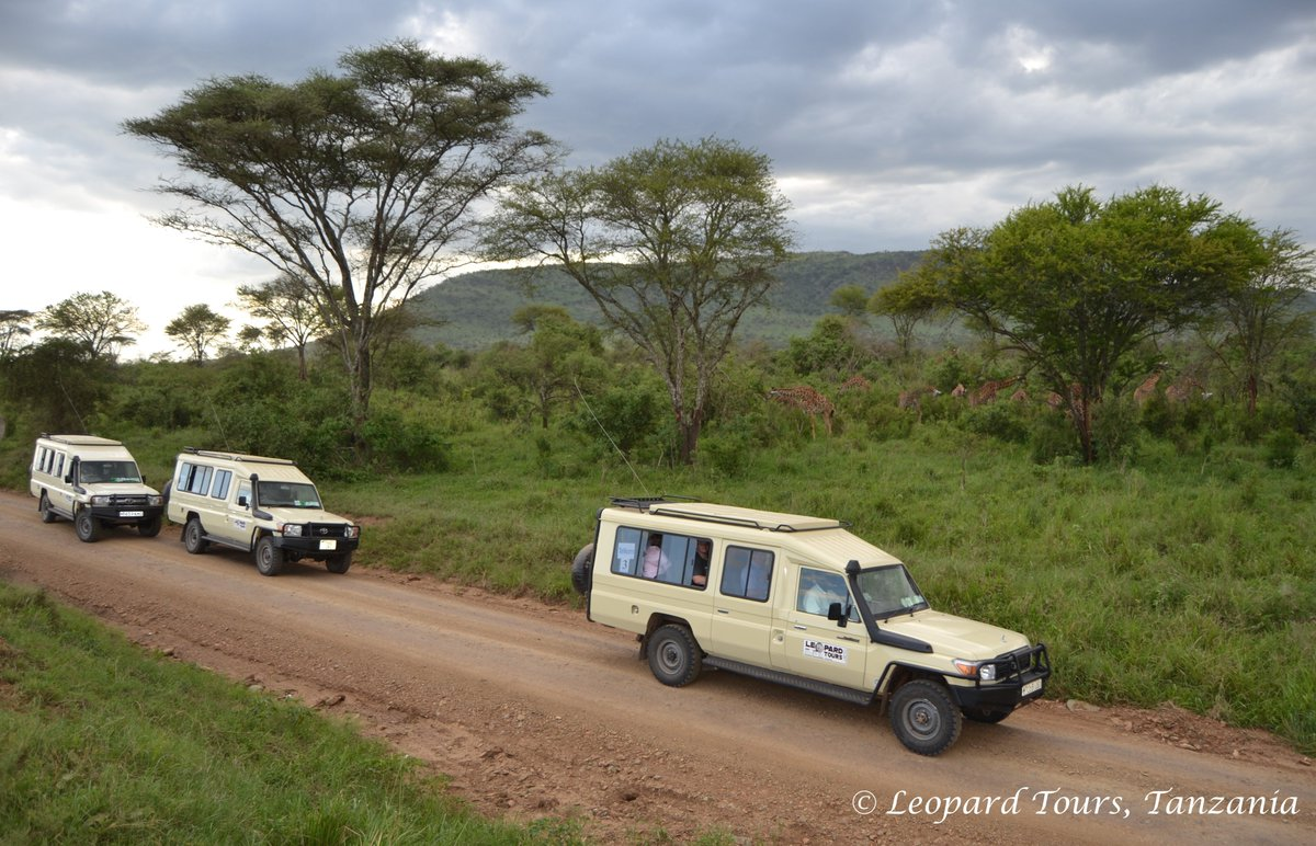 Driving in a custom built Leopard Tours safari vehicle with a professional driver-guide, you will be having a lifetime experience searching wildlife & exploring the true African wilderness in Tanzania. #travel #safari #lifetimeexperience #panoramic #Tanzania #leopardtourstanzania