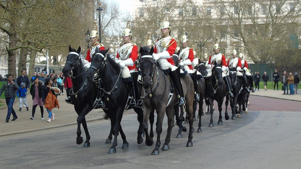 queens life guards - 960×539