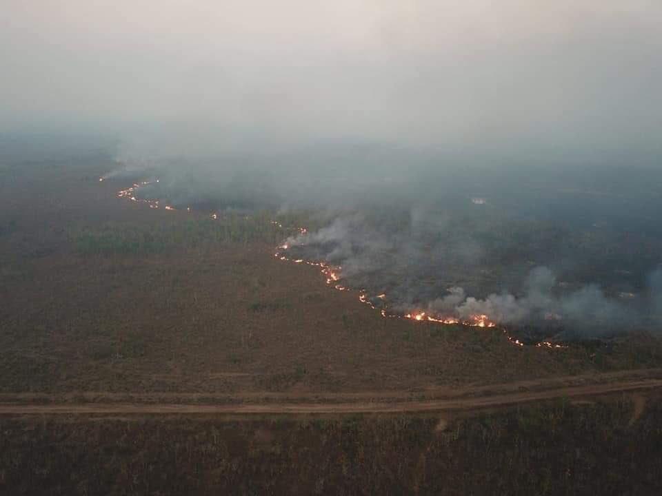 The Amazon rainforest is burning. #PrayforAmazonia. Fuck you Bolsonaro. 👎🏽