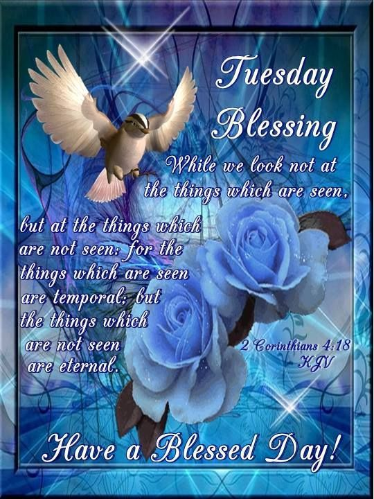 #Tuesday #Blessings #TwitterFriends 💙Have A Lovely Day!💙